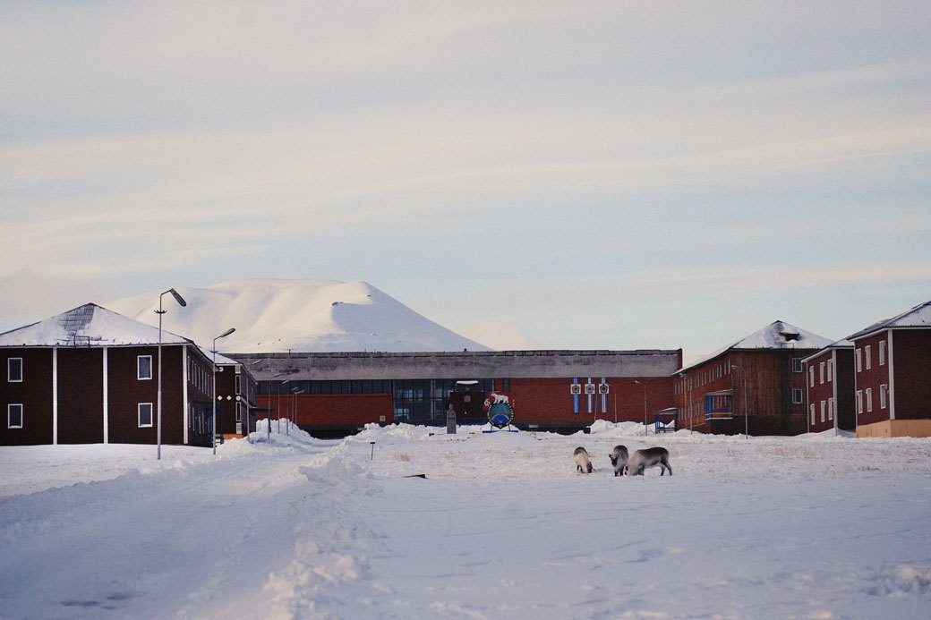 «А давайте все тут заморозим»: Как я провел две недели на Шпицбергене. Изображение № 12.