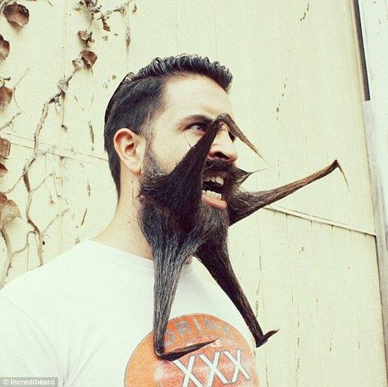 Американец с бородой невероятной формы покоряет блогосферу. Изображение № 2.