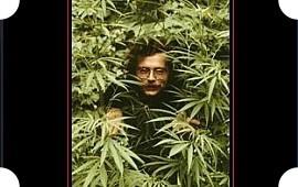 Там за туманами: 40 фильмов и 40 альбомов ко всемирному дню свободы марихуаны. Изображение № 45.