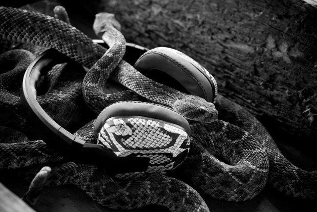 Скейтбордист Эрик Костон и марка Skullcandy выпустили совместную линейку наушников. Изображение № 5.
