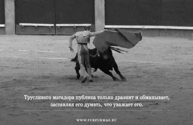 «Бык может отнять у тореро жизнь, но не славу»: Кодекс чести матадоров. Изображение № 8.