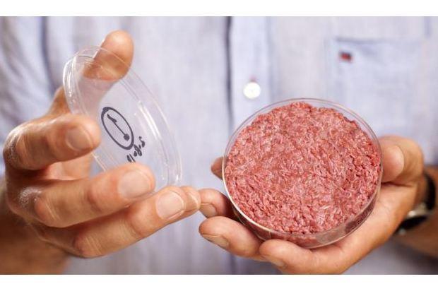 В Лондоне съели первый в мире гамбургер из синтетического мяса. Изображение № 3.