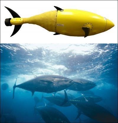 Американские спецслужбы создали робота-тунца. Изображение № 1.