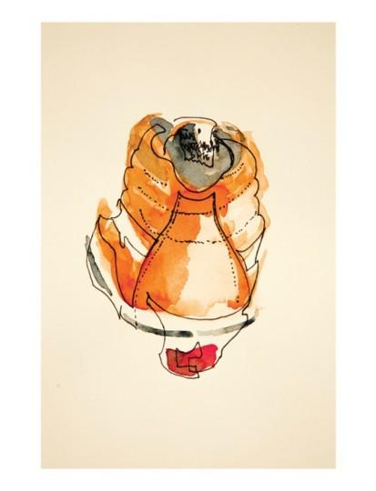 Иллюстрированный лукбук весенней коллекции марки Vans Vault. Изображение № 4.