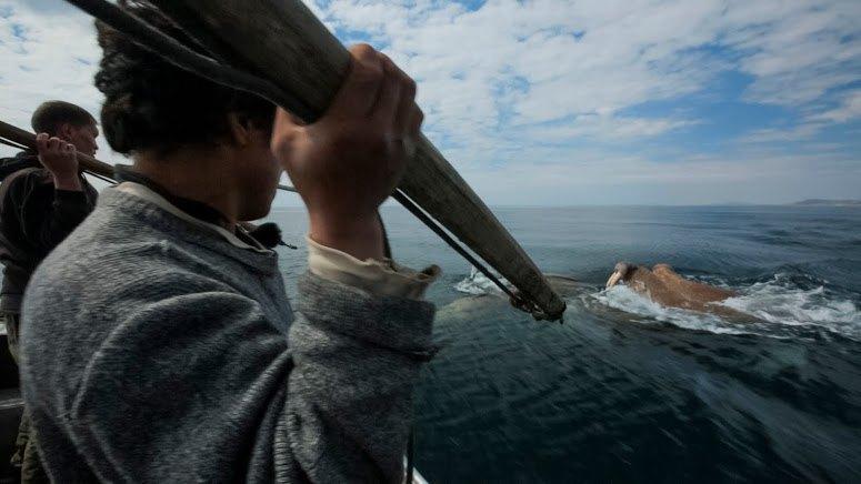 Начальник Чукотки: Как я 40 дней снимал фильм об охотниках на китов. Изображение № 12.