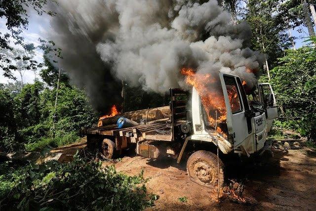 Индейцы Амазонии открыли охоту на браконьеров. Изображение № 6.