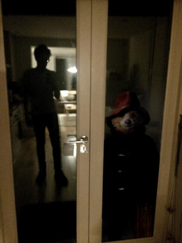 Creepy Paddington: Самый добрый медвежонок на свете в образе злодея. Изображение № 3.