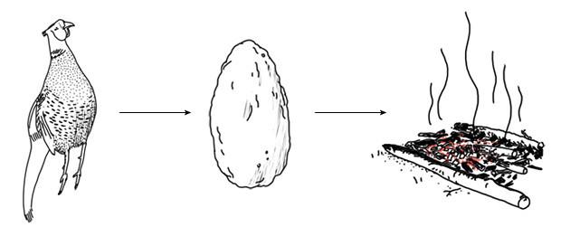 Как выжить в лесу: Техника приготовления еды в условиях дикой природы. Изображение №8.