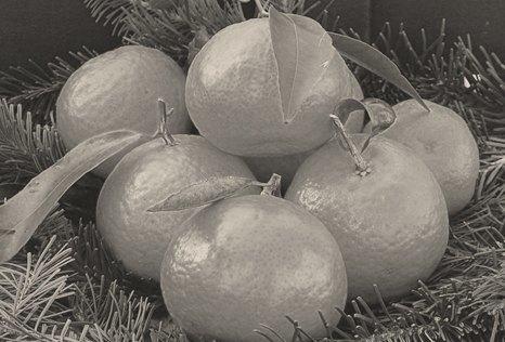 Национальная гордость: 10 главных блюд советского новогоднего застолья. Изображение № 11.