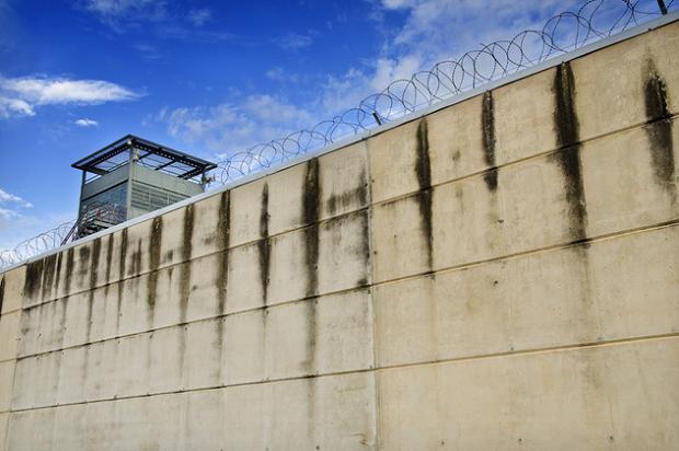 В США создана компьютерная программа для амнистии заключенных. Изображение № 1.