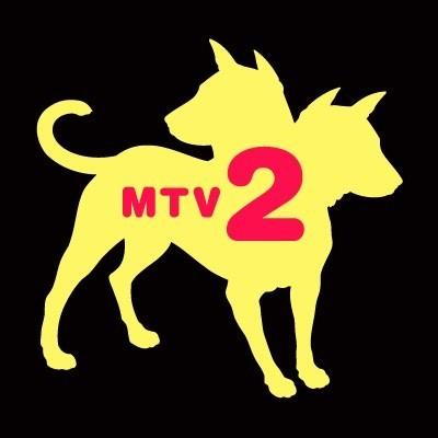 Прощай, молодость: 30 лет MTV. Изображение № 4.