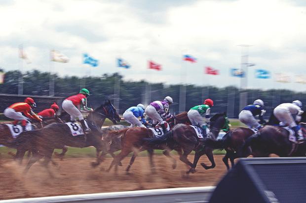 Полцарства за коня: Репортаж со скачек на московском ипподроме. Изображение № 18.