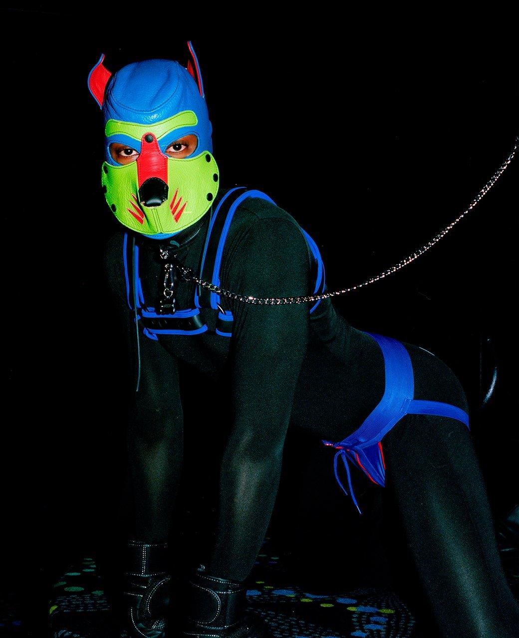 «Клуб укротителей»: Анималистический фетиш с перевоплощением в латексных щенят. Изображение № 5.