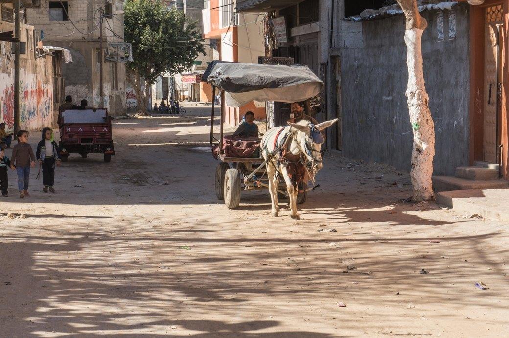 «Самая большая тюрьма в мире»: Путешествие в сектор Газа . Изображение № 16.