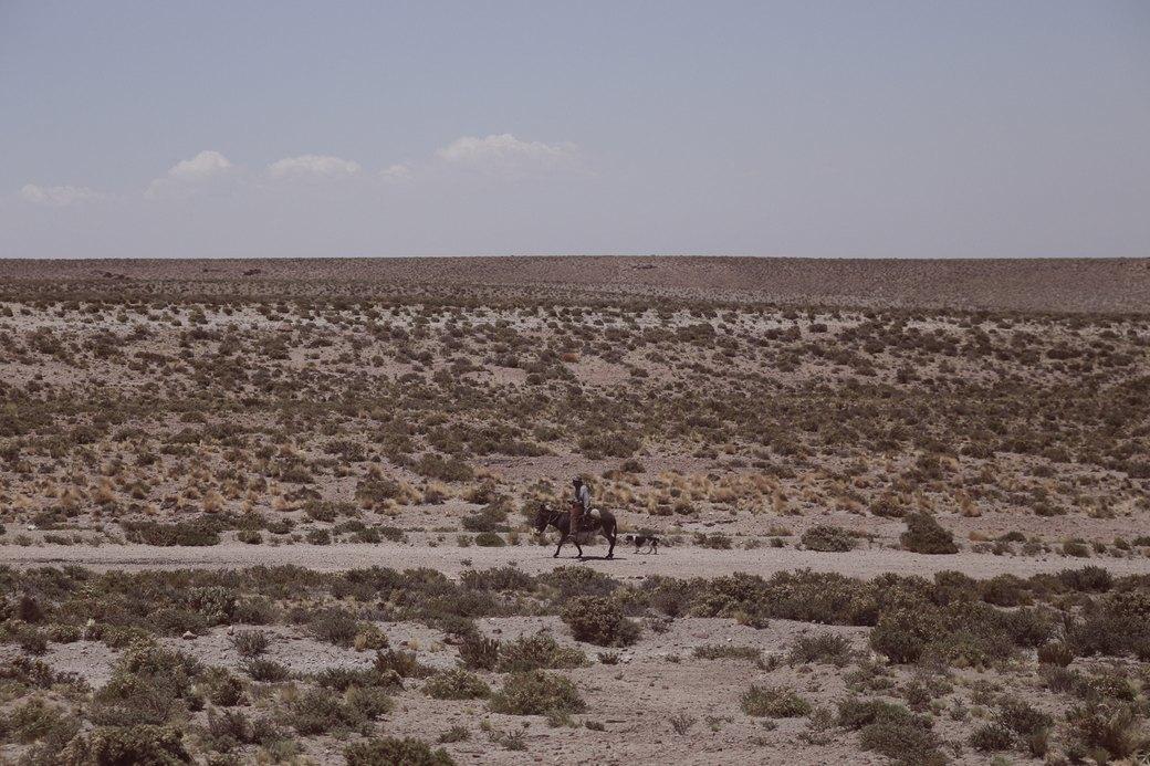 Буря в пустыне: Фоторепортаж с ралли «Дакар-2014» . Изображение № 50.
