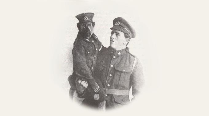 Как обезьяна-капрал, медвежонок-рядовой и другие животные помогали солдатам на войне. Изображение № 2.
