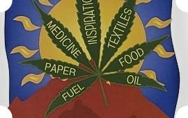Там за туманами: 40 фильмов и 40 альбомов ко всемирному дню свободы марихуаны. Изображение № 42.