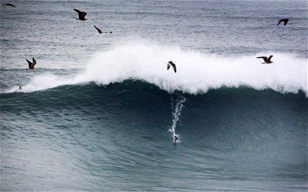 Бразильский серфер установил новый рекорд благодаря бушующему урагану . Изображение № 1.