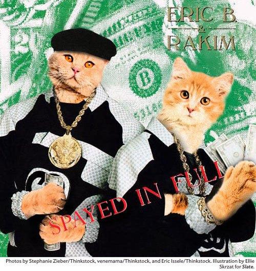 Художница поместила котов на обложки культовых рэп-альбомов. Изображение № 3.