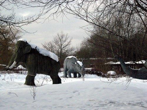 На eBay выставлен заброшенный парк аттракционов . Изображение № 1.