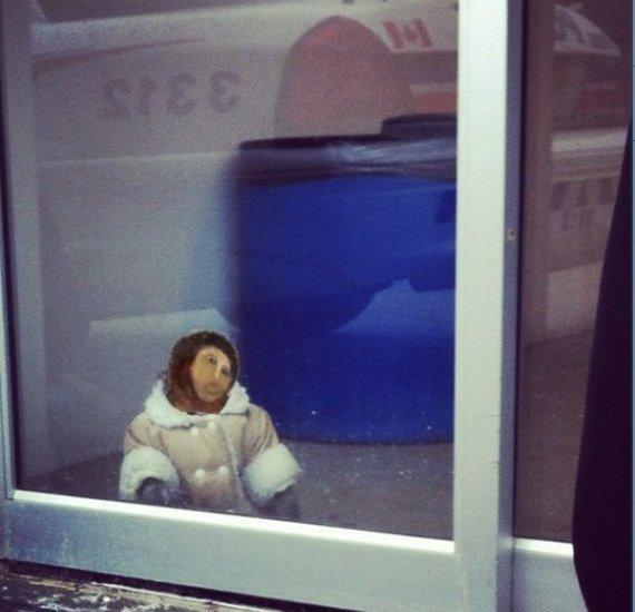 В Канаде обезьяна в пальто зашла в магазин IKEA. Изображение №15.