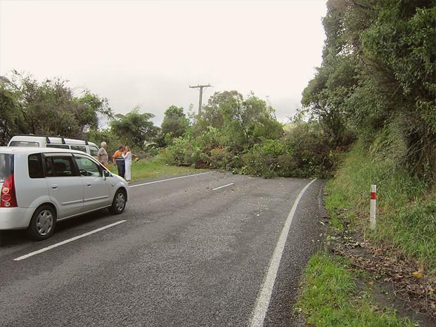 Прыгну со скалы: Как я объехал Новую Зеландию, чтобы совершить прыжок с тарзанкой с высоты 134 метра. Изображение №12.