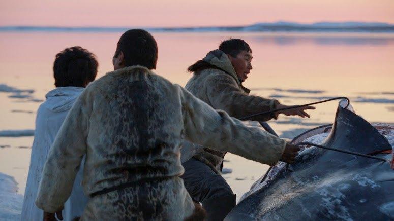 Начальник Чукотки: Как я 40 дней снимал фильм об охотниках на китов. Изображение № 17.