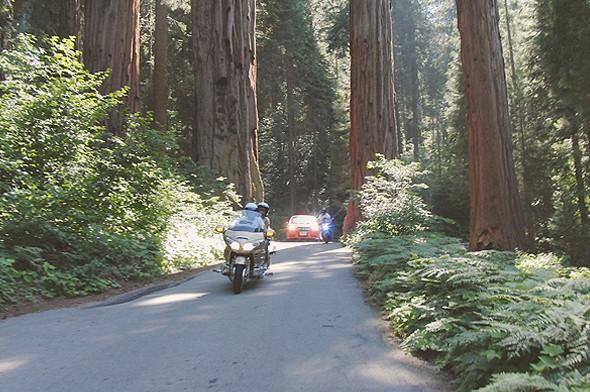 Как я путешествовал по Америке на мотоцикле. Изображение № 19.