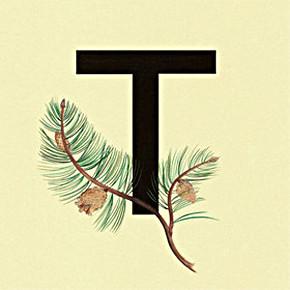 «Труд» — новый сайд-проект участников группы Manicure. Изображение № 1.