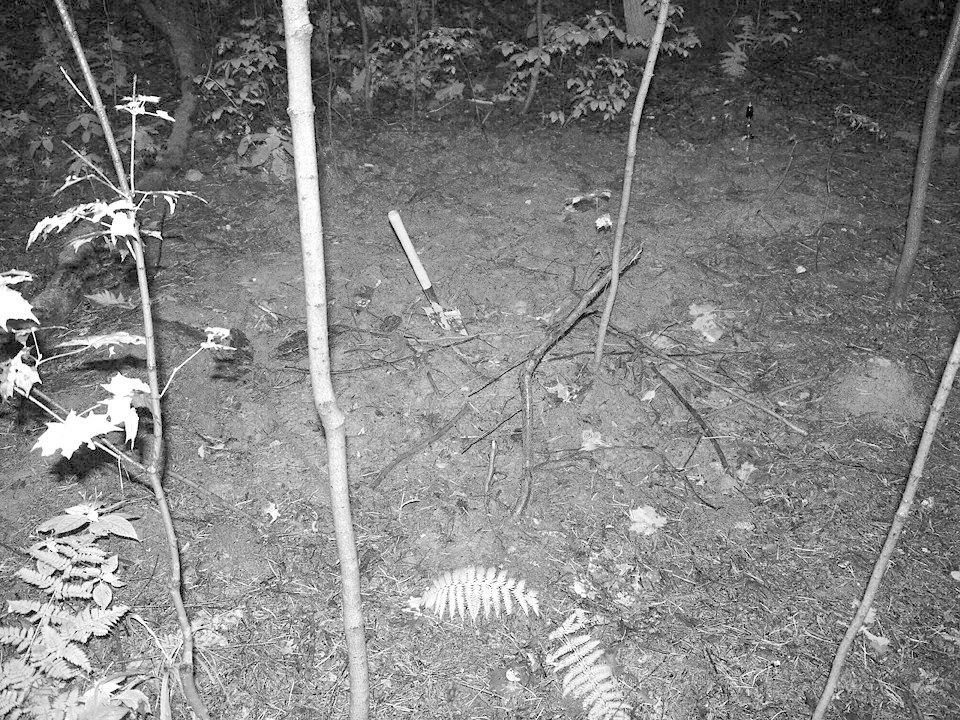 Финал эксперимента: Редакция FURFUR выкопала хэритейдж-лук. Изображение № 54.