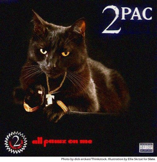 Художница поместила котов на обложки культовых рэп-альбомов. Изображение № 9.