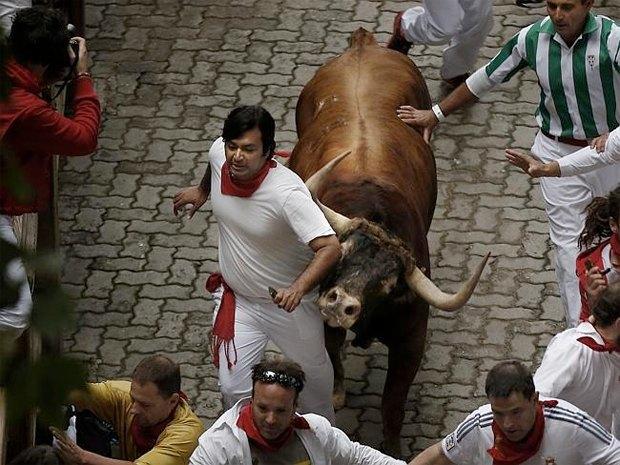 Автора книги о забеге быков растоптал бык. Изображение № 1.