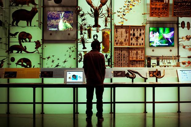 Марка Huf сняла второй осенний лукбук в Американском музее естественной истории. Изображение № 6.