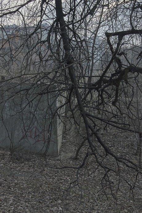 Дима Толкачёв: Диалог природы и человека в урбанистической среде. Изображение № 27.