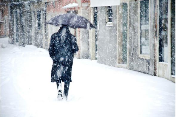 Мудборд, составленный Данилой Антоновским. Источник: flickr.com. Изображение № 27.