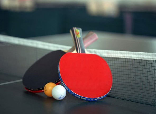 скачать бесплатно игру пинг понг img-1