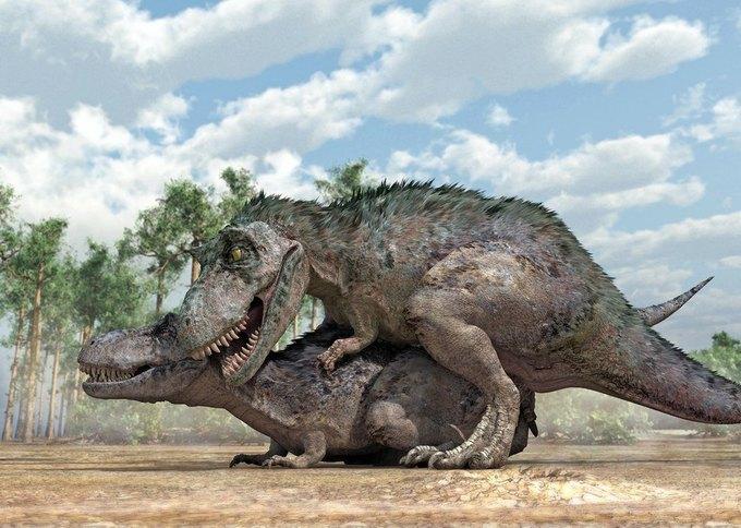 Вечная любовь: Американский палеонтолог рассказал о сексе динозавров. Изображение № 2.