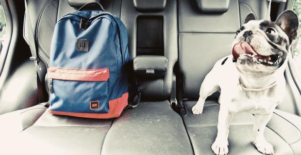Новая марка: Рюкзаки, сумки и аксессуары GUD. Изображение № 5.