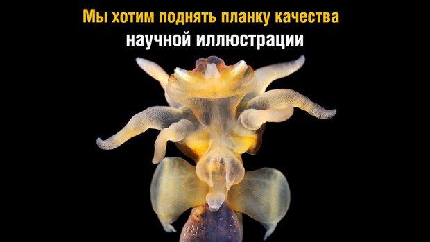 Российские ученые-энтузиасты собирают 1,5 млн рублей на кругосветную экспедицию. Изображение № 6.