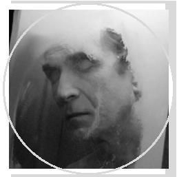 Совет старейшин: Ультимативный гид по долгожительству. Изображение № 19.