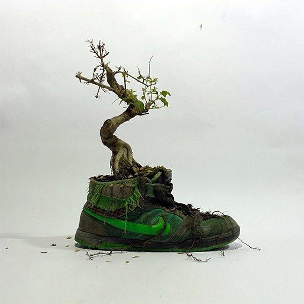 «Just Grow It!»: Известные модели кроссовок Nike из растений и цветов. Изображение № 1.
