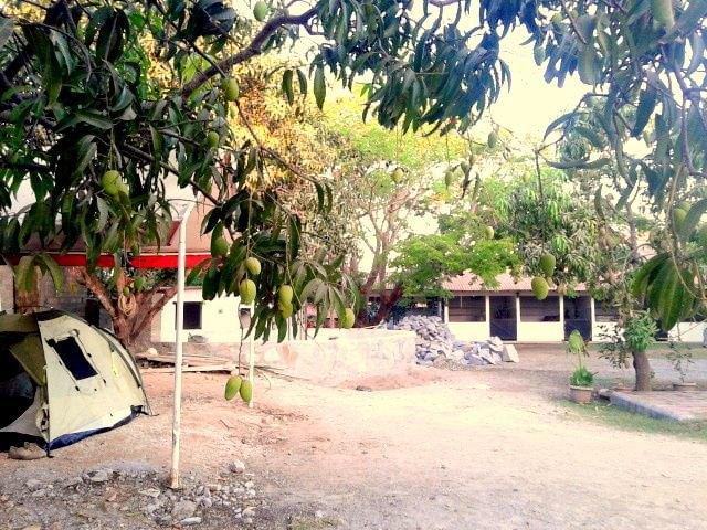 «Вся наша жизнь состоит из спусков и подъёмов»: Как я пересёк Мексику на велосипеде. Изображение № 15.
