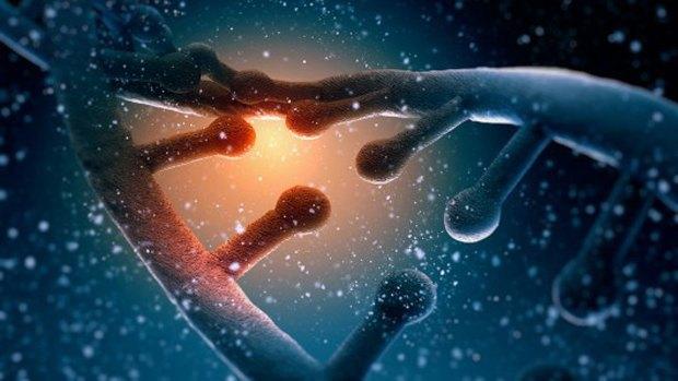 Американские учёные намерены создать новые формы жизни. Изображение № 1.