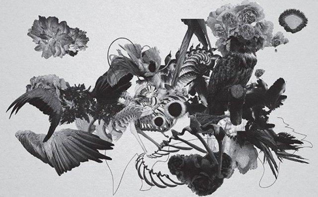 Муджус о своей персональной выставке «Метаморфозы» и мультимедийном искусстве. Изображение № 3.