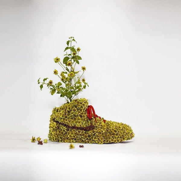«Just Grow It!»: Известные модели кроссовок Nike из растений и цветов. Изображение № 4.