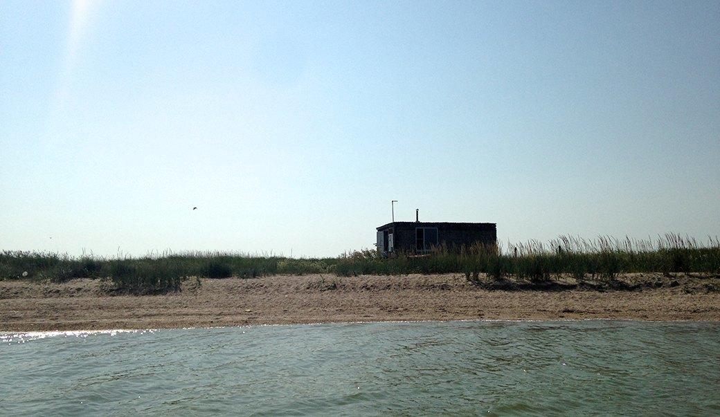 Чайки, рыба и фантастические романы: Как я уехал от людей жить на остров. Изображение № 1.