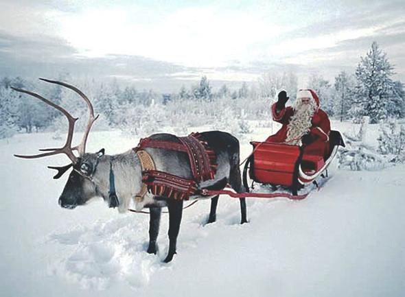 Кошмар перед Рождеством: Абсурдные события прошедших выходных дней. Изображение № 15.