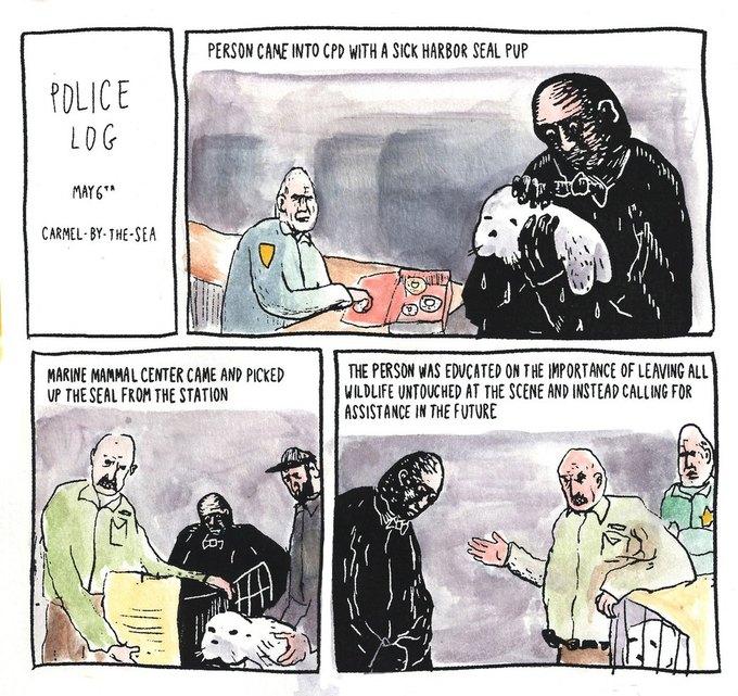Police Log Comics: Абсурдные полицейские сводки в формате комиксов. Изображение № 11.