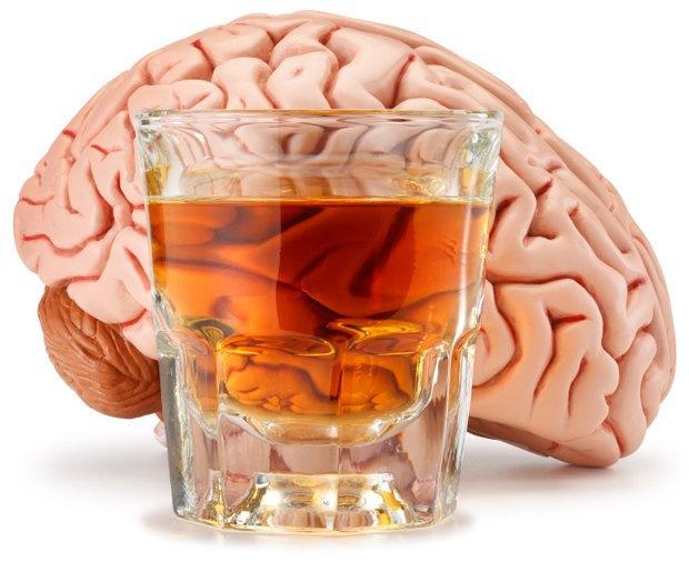 Учёные доказали, что алкоголь не разрушает клетки мозга. Изображение № 1.