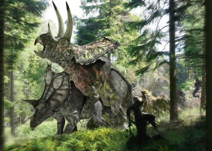 Вечная любовь: Американский палеонтолог рассказал о сексе динозавров. Изображение № 1.